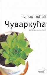 Čuvarkuća (lat. Sempervivum tectorum)