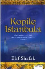 Kopile Istanbula