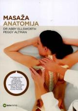 Masaža: anatomija - Sveobuhvatni vodič