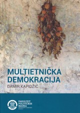 Multietnička demokracija