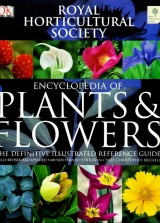 Encyclopedia of plants & flowers