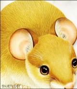 Slikovnice likovi životinja: Poljski miš