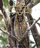 Urban Lady - The Phenomenon of the Long-Eared Owl Wintering Grounds in the Cities of Northern Bosnia and Herzegovina