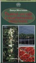 Gajenje jagode u zaštićenom prostoru