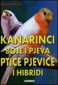 Kanarinci boje i pjeva; ptice pjevice i hibridi