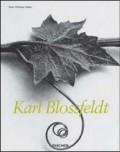 Karl Blossfeldt MS