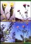 Kultivirane biljne vrste Hrvatske i susjednih područja