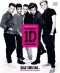 One Direction - Gdje smo sad… Naš bend, naša priča