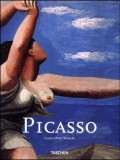 Picasso MS