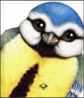 Ptica - slikovnice životinja