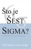 Što je šest sigma?